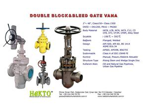 Double Block And Bleed Gate Valve Sürgülü Vana DBB Çift Blok Blid